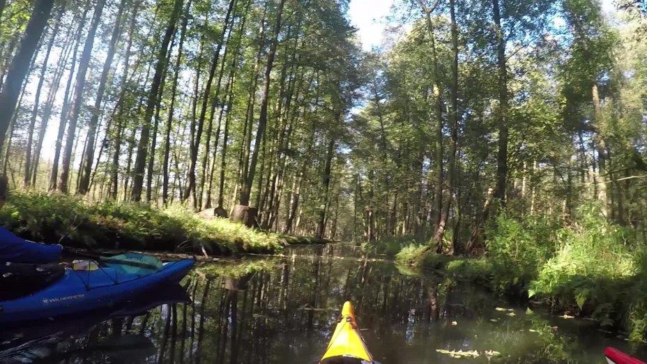 Rumgurken im Spreewald - natürlich im Kajak